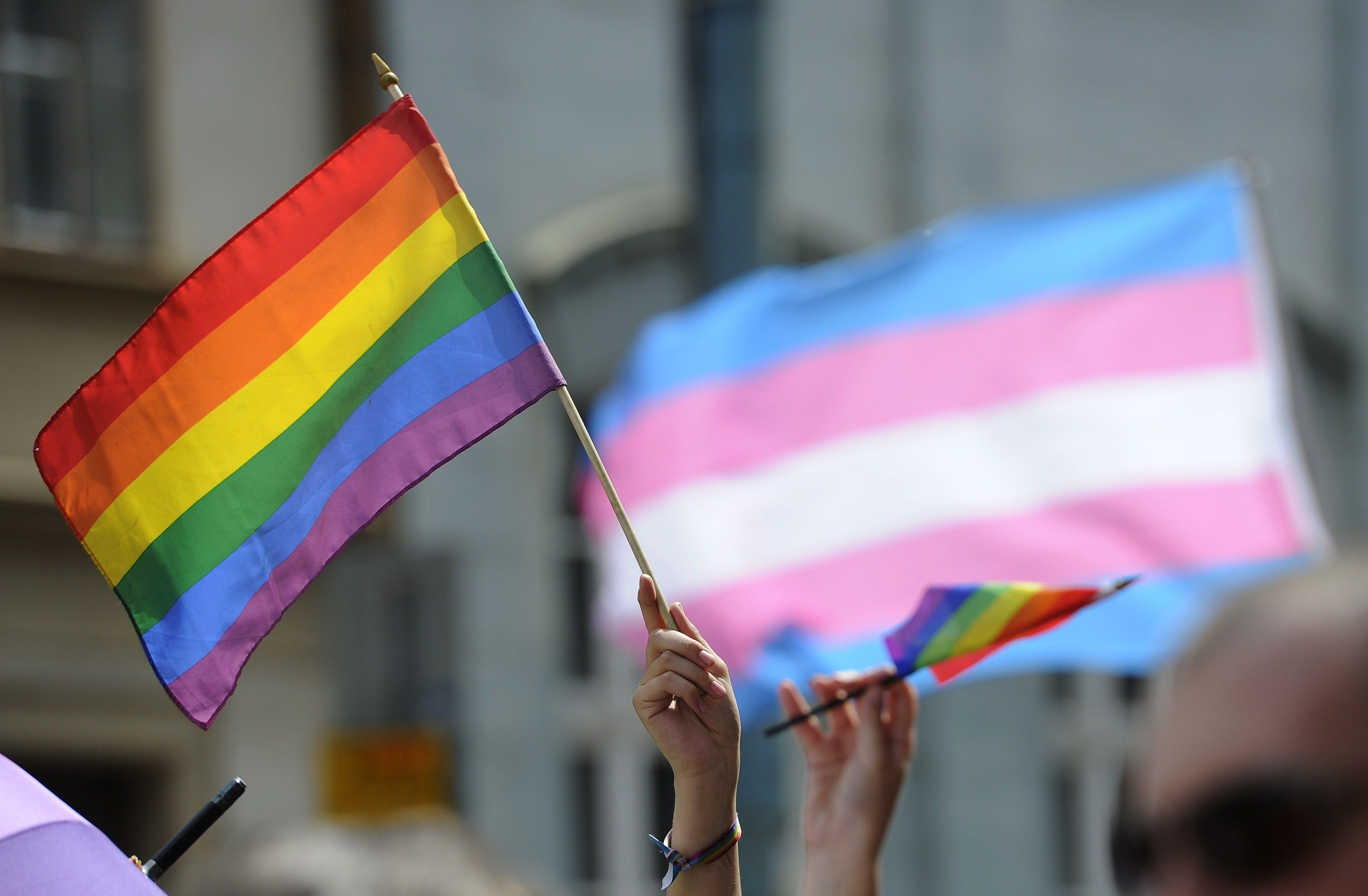 Outdoors, at what looks to be a pride celebration, hands are raised in the air, some holding onto small rainbow flags, -which are billowing in the breeze. In the background is a large transgender flag waving with a building behind it.